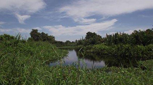 Danau Janda Gatal di Rohil, Kok Bisa Sih Namanya seperti Itu?