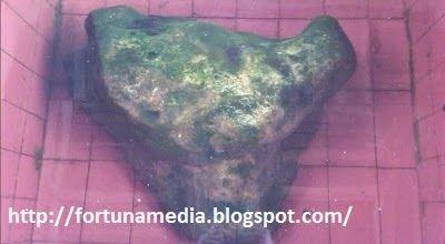 Misteri Legenda Batu Bentuk Kepala Kerbau di Mesjid Jami' Airtiris Kampar Riau
