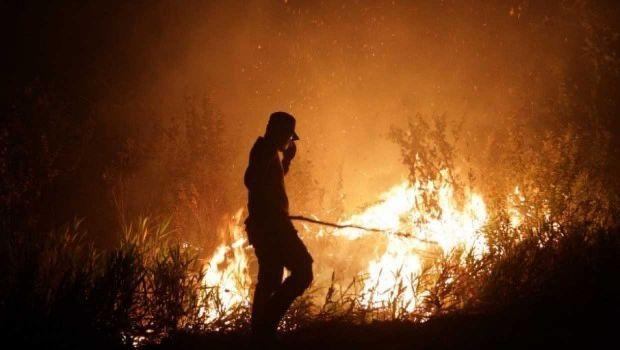Walah, BNPB Tak Tahu Kapan Kebakaran Hutan Bisa Dipadamkan