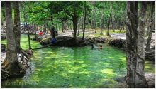 kemilau-sungai-hijau-di-kampar-riau