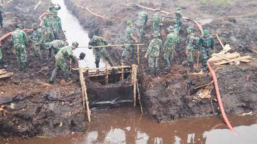 Walhi Praperadilankan SP3 Perusahaan Terduga Pembakar Hutan di Riau