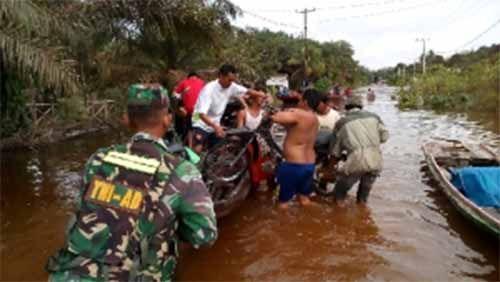 Tragis... Sedang Menolong Korban Banjir Sungai Nilo Pelalawan, Fernando Malah Terbawa Arus dan Saat Ditemukan Sudah Tewas Tersangkut di Pohon