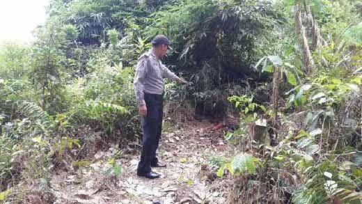 Hasil Autopsi Mayat tanpa Identitas di Desa Kampungpinang Kampar Sudah Keluar: Korbannya Seorang Wanita dan Kematiannya karena Dibunuh