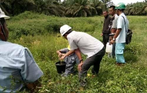 BLH Pelalawan Ambil Sampel Air Sungai Ukui yang Diduga Tercemar Limbah PT Gandaerah Hendana