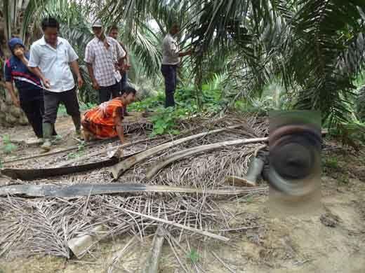 Mayat Wanita di Kebun Sawit Gegerkan Warga Desa Tukjimun Kecamatan Kemuning Indragiri Hilir