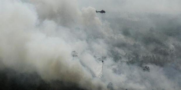 Kapolri Diminta Bentuk Tim Sikapi Penghentian Kasus Kebakaran Hutan di Riau