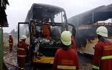 dua-bus-pariwisata-milik-warga-pekanbaru-tibatiba-terbakar-di-parkiran
