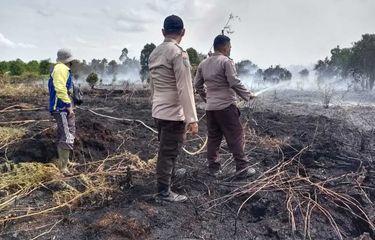 Pulang ke Rumah untuk Minum, Warga Meranti Ini tak Sadar Api dari Pembakaran Belukar Hanguskan 5 Hektar Lahan Milik Warga Lain