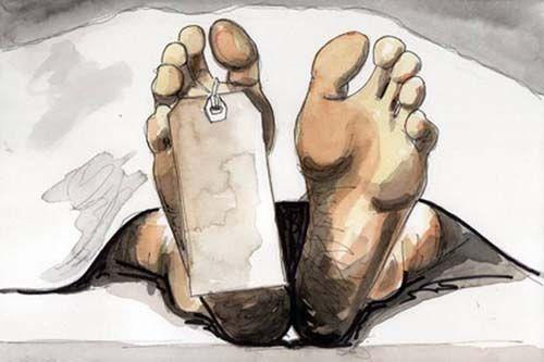 Nenek Hajjah Berusia 70 Tahun Tewas Dibunuh di Desa Tanahmerah Inhil, Perhiasan Dibawa Kabur Perampok
