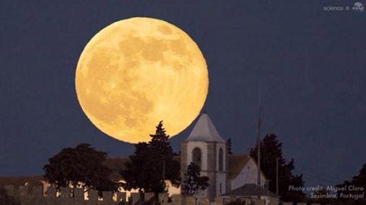 Bersiaplah! Senin 14 November Besok, Bulan Purnama Berada di Posisi Paling Dekat Sejak 1948