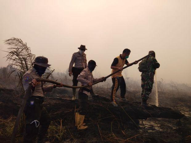 Karhutla di Awal Tahun, 15 Hektar Lahan di Siak Terbakar