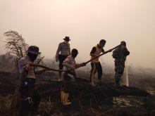 karhutla-di-awal-tahun-15-hektar-lahan-di-siak-terbakar