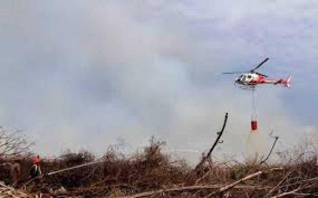 Walhi Kritik Cara Kerja Jokowi Tangani Bencana Asap yang Dianggap Tak Efektif
