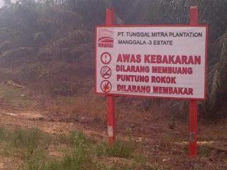 Nestapa Karyawan PT Tunggal Mitra Plantation di Rohil, Gaji Dipenggal Rp10 Ribu per Bulan