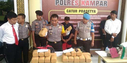 Bawa 21 Kg Ganja dari Aceh, 2 Pengedar Ditangkap di Dalam Bus PO Pinem di Riau