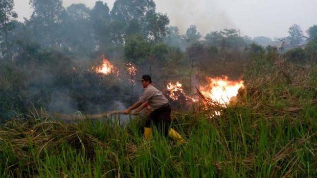 Rusia dan Jepang Acungkan Jempol, Pramuka Ikut Terjun Padamkan Kebakaran Hutan dan Lahan
