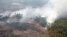 ada-indikasi-kebakaran-hutan-dan-lahan-titik-api-kembali-muncul-di-enam-wilayah-riau