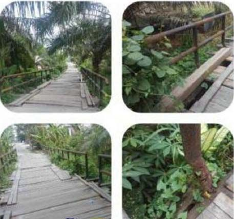 Satu-satunya Akses Keluar Masuk Kampung, Jembatan Suak Makmur di Siak Tinggal Menunggu Waktu Ambruk