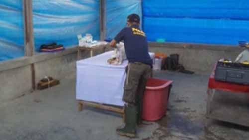 Polisi Autopsi Jenazah Balita 18 Bulan yang Tewas Diduga Dianiaya di Panti Asuhan Tunas Bangsa Pekanbaru, Begini Kondisinya