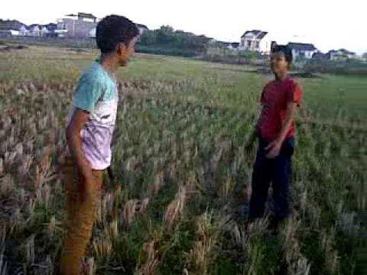 Dua Pemuda di Desa Sikakak Cerenti Kuansing Cekcok lalu Bergumul di Tengah Sawah, Seorang Berhasil Meraih Parang dan Menebas Lawannya