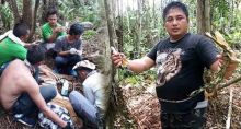 harimau-sumatera-ditemukan-terluka-terkena-jerat-di-konsesi-hti-pt-rapp