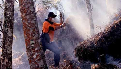 Satgas Karhutla Berjibaku Padamkan Kebakaran Lahan di Rokan Hilir