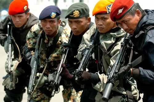 Pasukan Khusus Segera Diturunkan Menyergap Perambah Hutan Riau yang Makin Nekat dan Canggih