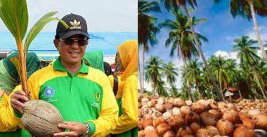 ada-yang-menyarankan-agar-bupati-inhil-hm-wardan-dinobatkan-sebagai-presiden-kelapa-dunia